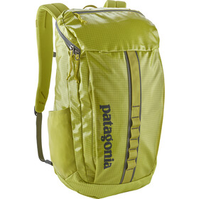 Patagonia Black Hole Daypack 25l folios green